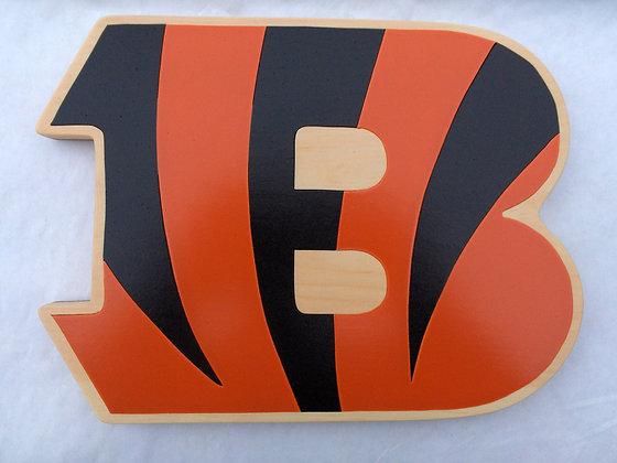 Cincinnati Bengals 2004-Present