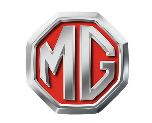 MG 2009