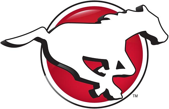 Calgary Stampeders 2013-2015