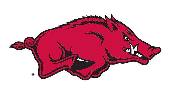 Arkansas Razorbacks 2001-2013
