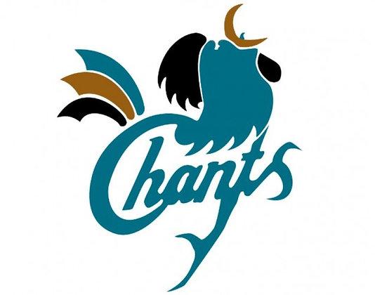 Coastal Carolina Chanticleers 1995-2001