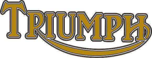 Triumph (1936)