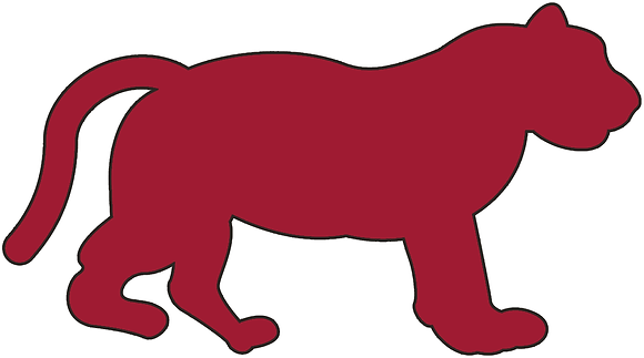 Detroit Tigers 1901-1902