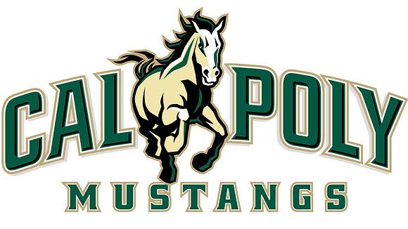 Cal Poly Mustangs 1999-Present