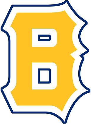 Boston Bees 1938