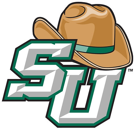 Stetson Hatters 2008-Present