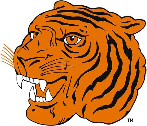 Hamilton Tigers 1920