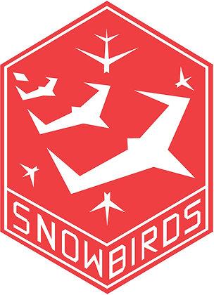 CF18 Snowbirds