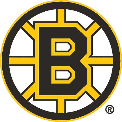 Boston Bruins 1995-2006