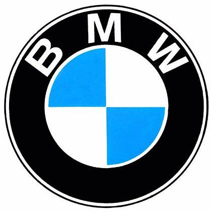 BMW 1954