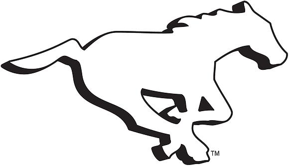 Calgary Stampeders 2019-Present