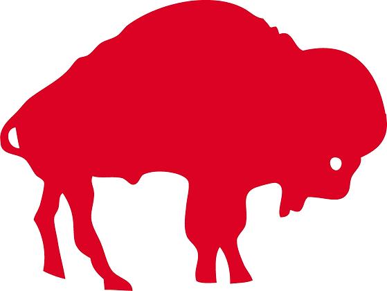 Buffalo Bills 1970-1973