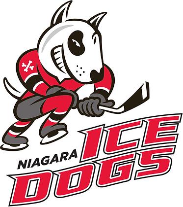 Niagara Ice Dogs 2007-pres