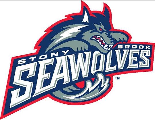 Stony Brook Seawolves 1998-2007