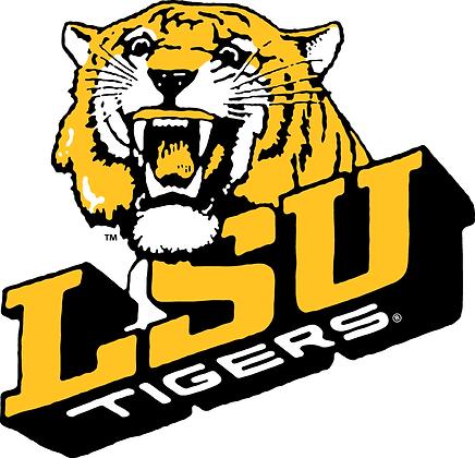 LSU Tigers 1980-1989