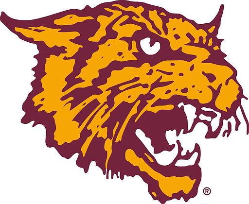Bethune Cookman Wildcats 2000-2015