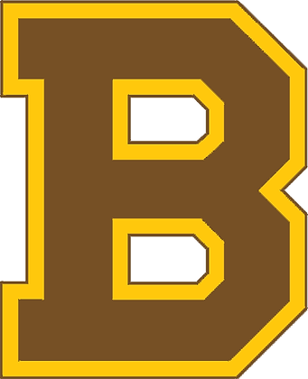 Boston Bruins 1932-1933