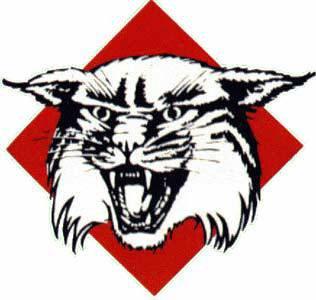 Davidson Wildcats 1985-2009
