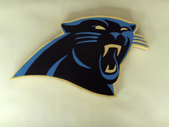 Carolina Panthers 2012-Present