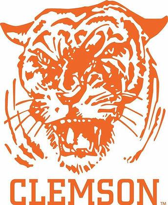 Clemson Tigers 1965-1969