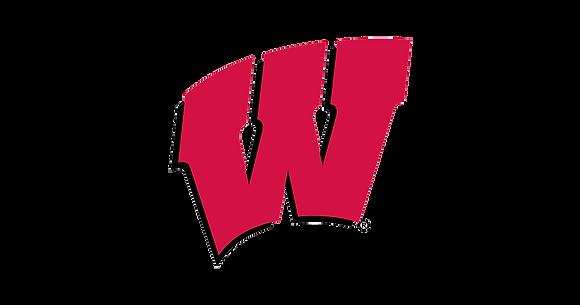 Wisconsin Badgers 1991-Present