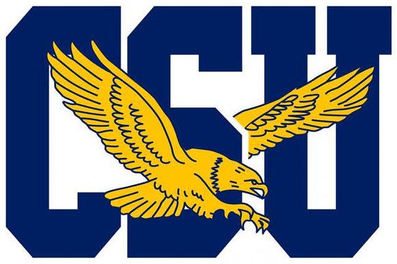 Coppin State Eagles 2017-Present