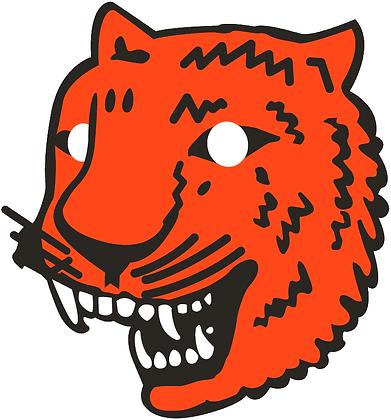Detroit Tigers 1927-1928