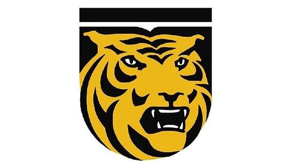 Colorado College Tigers 1978-Present