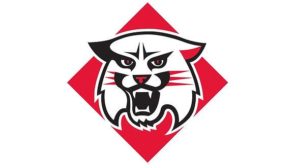 Davidson Wildcats 2010-Present