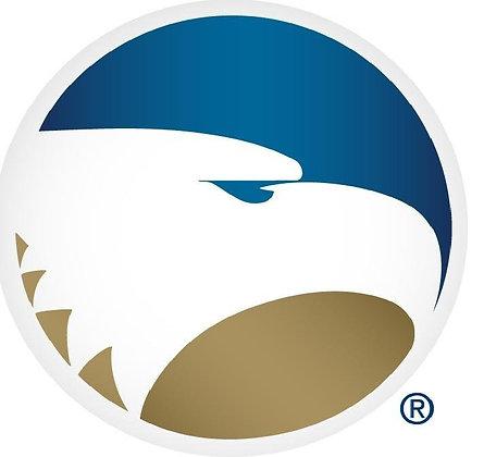 Georgia Southern Eagles 1982-2003
