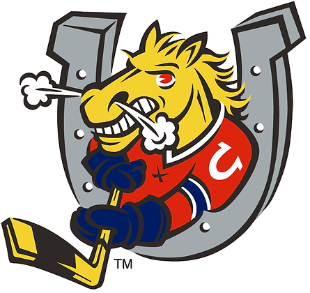 Barrie Colts 1995-pres