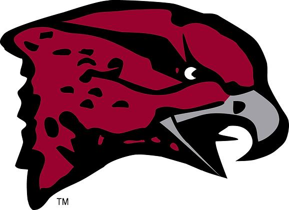 Maryland-Eastern Shore Hawks 2007-Present