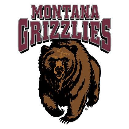 Montana Grizzlies 1996-Present