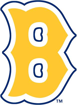 Boston Bees 1936-1937