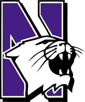 Northwestern Wildcats 1981-Present