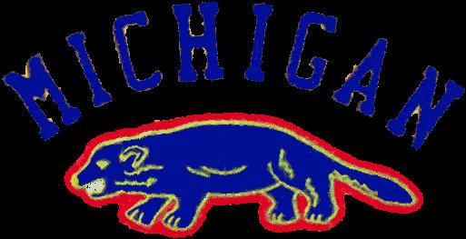Michigan Wolverines 1912-1921