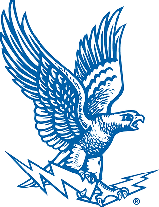 Air Force Falcons 1963-1994