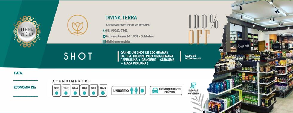 divina100.png
