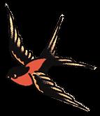 TAT-Bird_edited.png