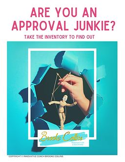 Approval Junkie Cover.png