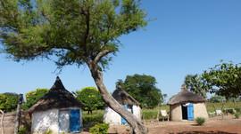 Traditions et guérisseurs du Burkina Faso du 20 au 31 octobre 2018