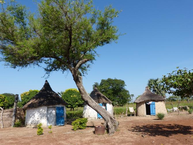 Traditions et guérisseurs du Burkina Faso date en suspens