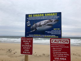 Cape Cod Ocean 2.jpg