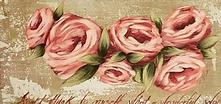 Pink Cabbage Rose.png