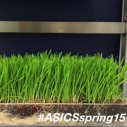 ASICS Spring '15 Press Preview