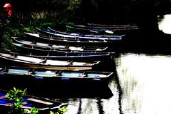 Row Boats, Killarney, Ireland