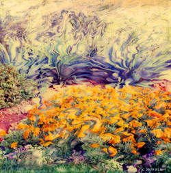 A Garden In Sedona