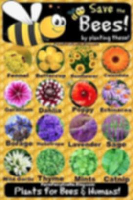 flowers for bees.jpg