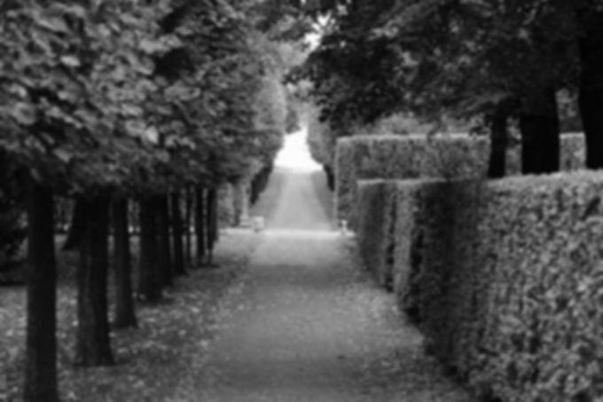 walkway-2550655_640.jpg