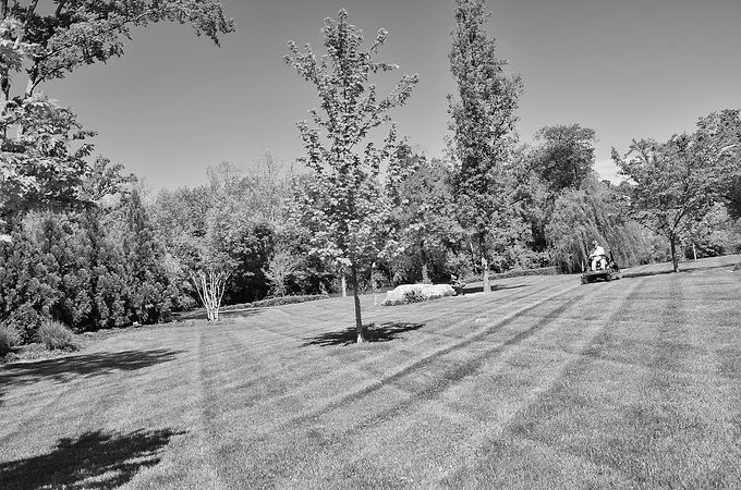 large yard zero turn bw.jpg
